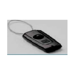 Antivol Module auto alarme RF + AM